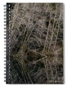 Red Alders 4 Spiral Notebook