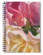 Red-amber-green Spiral Notebook