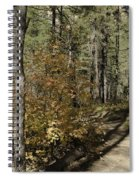 Red Among The Pines Spiral Notebook