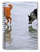 Red And Blue Heelers Spiral Notebook