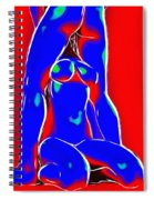 Red And Blue Spiral Notebook