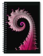 Red And Pink Fractal Spiral Spiral Notebook