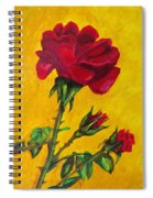 Red And Small Spiral Notebook