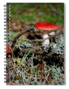 Red And White Mushrooms Spiral Notebook