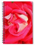 Red And White Rose Spiral Notebook