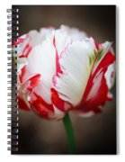 Red And White Tulip Spiral Notebook