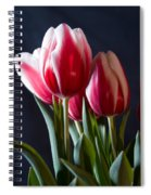 Red And White Tulips Spiral Notebook
