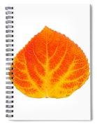 Red And Yellow Aspen Leaf 5 Spiral Notebook