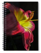 Red And Yellow Lily Spiral Notebook