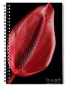 Red Anthurium #3 Spiral Notebook