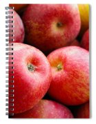 Red Apples Spiral Notebook