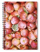 Red Apples With Green Leaf Spiral Notebook