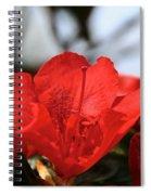 Red April Spiral Notebook