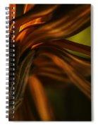 Red Autumn Blossom Detail Spiral Notebook