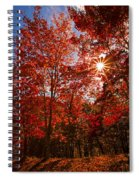 Red Autumn Leaves Spiral Notebook