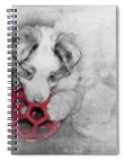 Red Ball Spiral Notebook