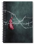 Red Balloon Spiral Notebook