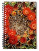 Red Barell Cactus Flowers Spiral Notebook
