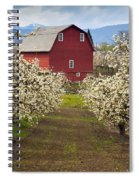 Red Barn Spring Spiral Notebook