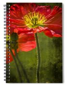Red Beauties In The Field Spiral Notebook