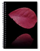 Red Beauty Spiral Notebook