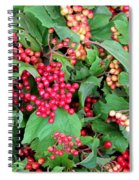 Red Berries And Green Leaves Spiral Notebook