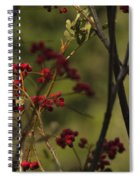 Red Berries Spiral Notebook
