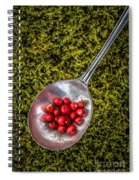 Red Berries Silver Spoon Moss Spiral Notebook