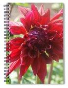 Red Blast Spiral Notebook