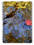 Red Blue And Gold Spiral Notebook