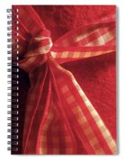 Red Bow Spiral Notebook