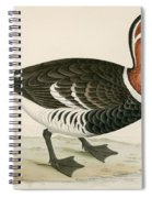 Red Breasted Goose Spiral Notebook