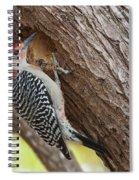 Red-bellied Woodpecker Spiral Notebook
