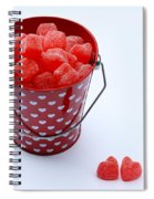Red Bucket Of Hearts Spiral Notebook