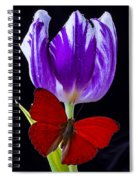 Red Butterfly And Purple Tulip Spiral Notebook