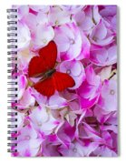 Red Butterfly On Hydrangea Spiral Notebook