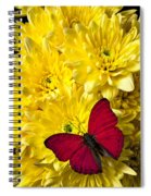 Red Butterfly On Poms Spiral Notebook