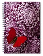 Red Butterfly On Red Mum Spiral Notebook