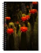 Red Cactus Flowers II  Spiral Notebook