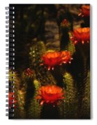 Red Cactus Flowers  Spiral Notebook