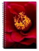 Red Camellia Spiral Notebook