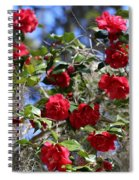 Red Camellias And Blue Sky Spiral Notebook