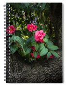 Red Camellias Spiral Notebook