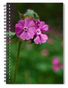 Red Campion Spiral Notebook