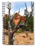 Red Canyon Tree And Rocks Spiral Notebook