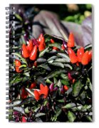 Red Chili Peppers Spiral Notebook