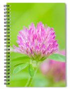 Red Clover Spiral Notebook