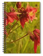 Red Columbine Spiral Notebook