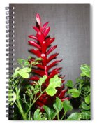 Red Cone Ginger - No 1 Spiral Notebook