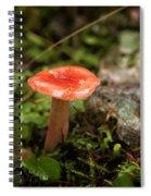 Red Coral Mushroom Spiral Notebook